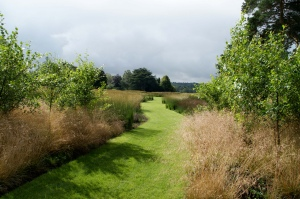 garden path of grass